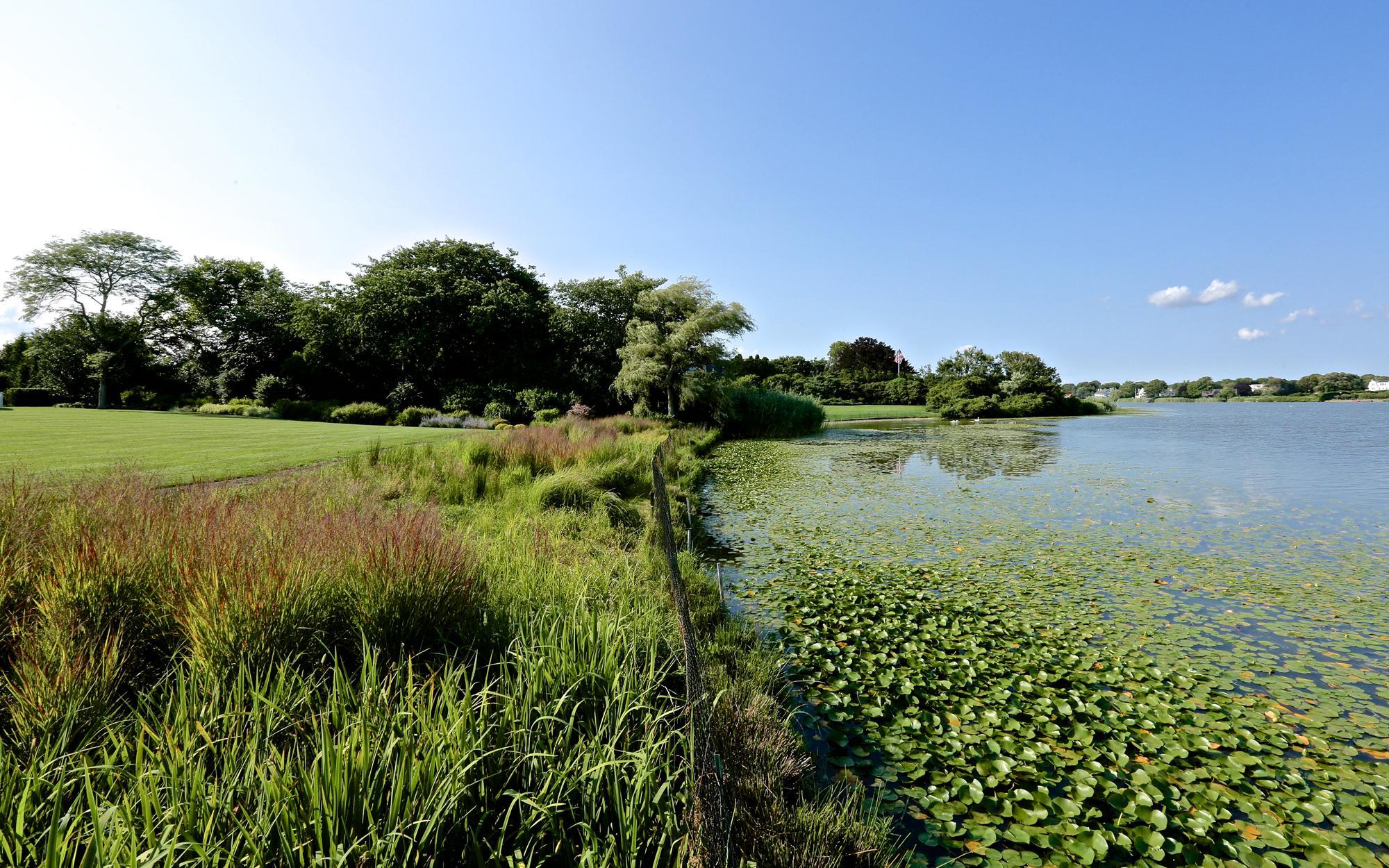 Araiys Design | Agawam Lake Residence-Wetland Buffer Planting
